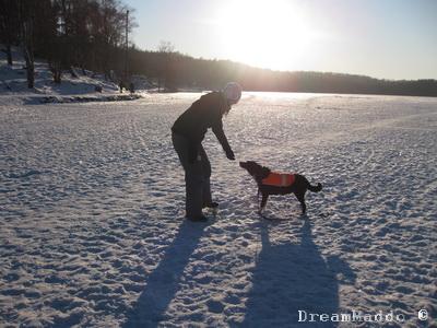 Matte och hund